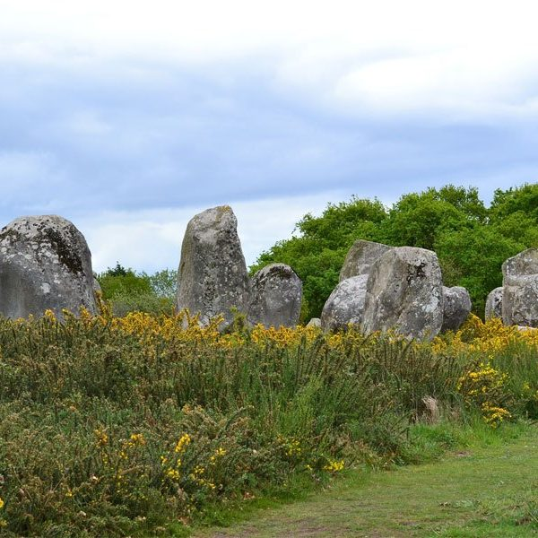 alignement-menhirs-carnac